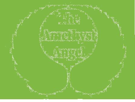amethyst angel logo green